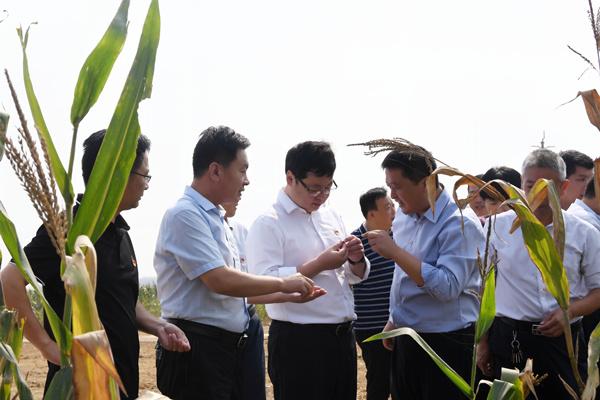 县委书记刘冰调研部分重点农业产业项目情况