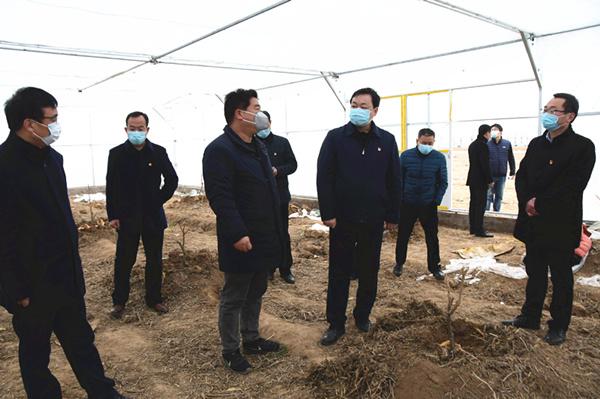 县委书记刘冰到千口镇、张果屯镇、杨村乡检...